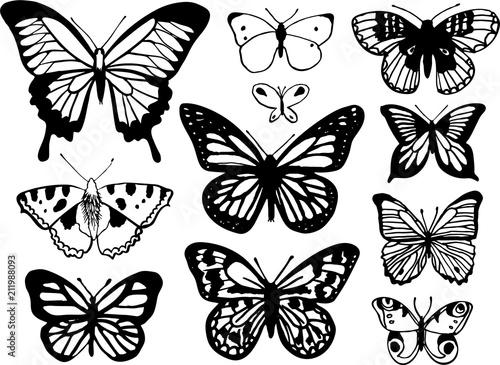 Photo sur Toile Papillons dans Grunge set of butterflies