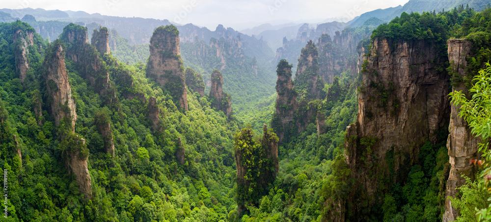 Fototapety, obrazy: Beautiful panorama of karst mountains in Zhiangjiajie National Park, China
