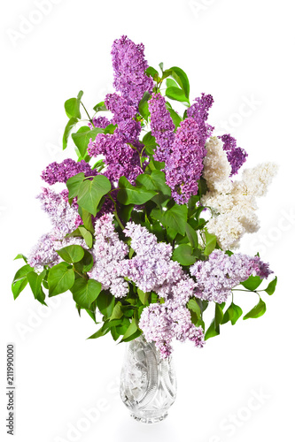 Fotobehang Lilac Bouquet of white and lilac and purple lilacs in a crystal vase on a white background.