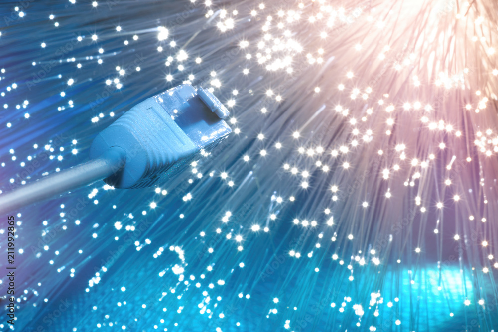 Fototapety, obrazy: Closeup on the end of optical fiber network cable on blue background