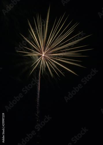 Fototapety, obrazy: Fireworks