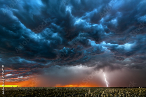 Fototapeta Lightning storm over field in Roswell New Mexico.