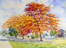 Watercolor Painting Original ...
