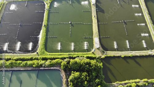 Aerial view of shrimp farm and air purifier in Thailand Wallpaper Mural