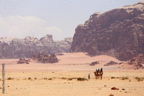 Photo  Caravan of camels walking in the Wadi Rum desert in Jordan on a sunny day