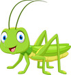 Cute grasshopper cartoon isolated on white background