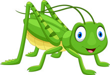 Cute Grasshopper Cartoon Isola...