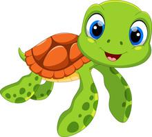 Cute Sea Turtle Cartoon Isolat...
