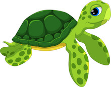 Cute Sea Turtle Cartoon Isolat...