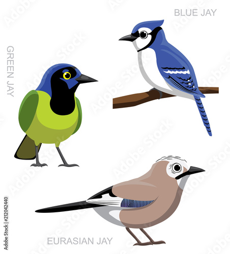 Fotografiet Bird Jay Set Cartoon Vector Illustration