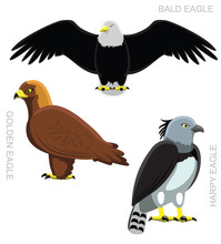 Bird Eagle Set Cartoon Vector ...