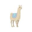Graceful white llama alpaca animal in ornamented poncho vector Illustration on a white background