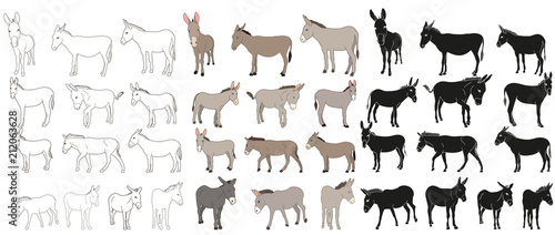 vector isolated donkey, mule, outline, collection of silhouettes Poster Mural XXL
