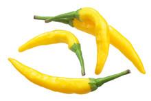 Macska Sarga Peppers, Paths