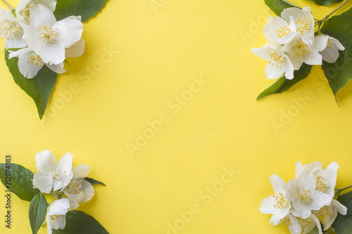 Photo Jasmine flowers on a bright yellow background