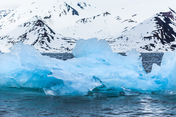 Arctic Ice and Mountains