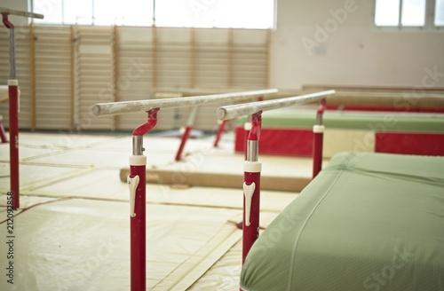 Gymnastique Gymnastics Hall. Gymnastic equipment.Parallel bars
