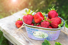 Sweet Fresh Strawberries In The Garden On Natural Background. Beautiful Strawberries In A Purple Basket