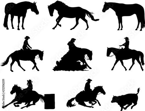 Fototapeta Quarter Horses - Western Sport obraz
