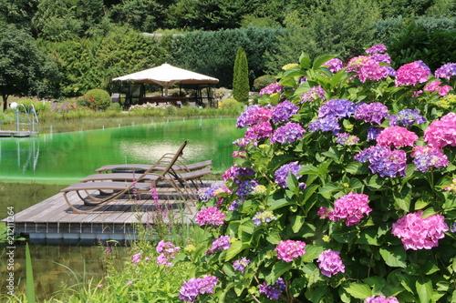 Modern Garden With Swimming Pond Moderner Garten Mit Schwimmteich