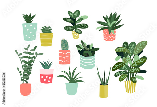 potted plants collection Canvas Print