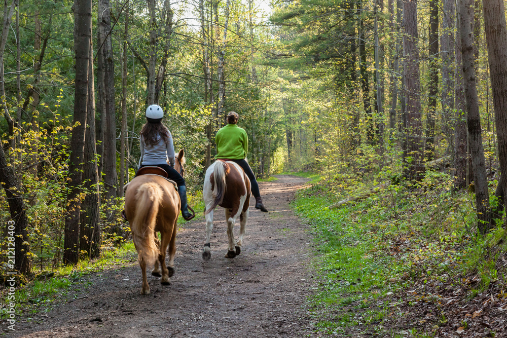 Fototapety, obrazy: Two women horseback riding in the forest.