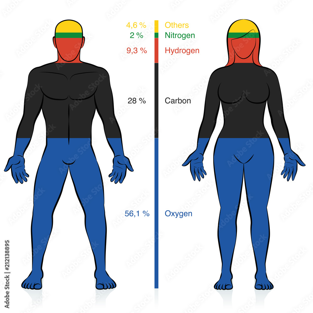 Photo & Art Print Main chemical elements of the human body