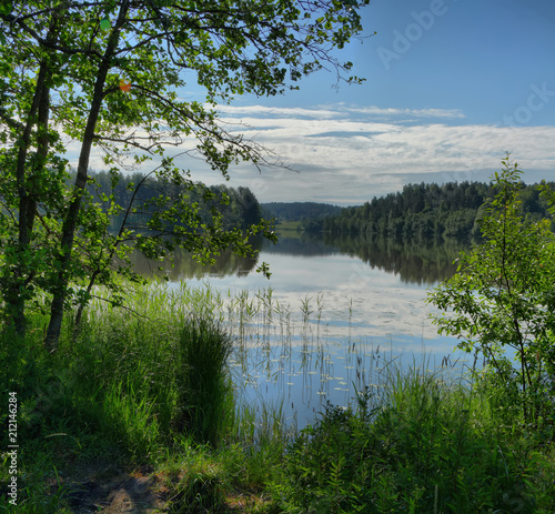 Tuinposter Meer / Vijver Landscape with forest lake