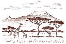 Vintage African Landscape. Saf...