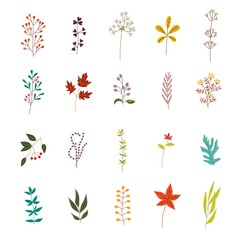 Autumn plants and leaves set with various foliage and branches decorative elements isolated on white background - beautiful fall seasonal objects for your design in flat vector illustration.