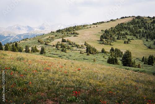 Spoed Foto op Canvas Wit Landscape view of Shrine Mountains Trail in Colorado.