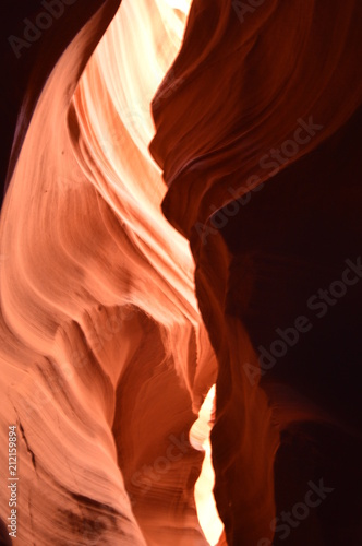 Keuken foto achterwand Antilope Navarro Reserve and Bryce canyon