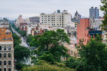 View Of Harlem From Morningsid...