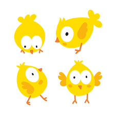 Chick Character Vector Design
