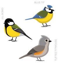 Bird Tit Set Cartoon Vector Illustration
