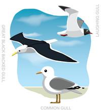 Bird Gull Set Cartoon Vector Illustration