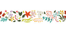 Autumn Horizontal Banner With Fall Colorful Leaves And Berries Isolated On White Background. Flat Vector Illustration Of Plant Objects - Natural Seasonal Decorative Element.