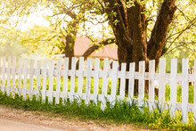 White Fence And Green Hedge With Tree On Blue Sky