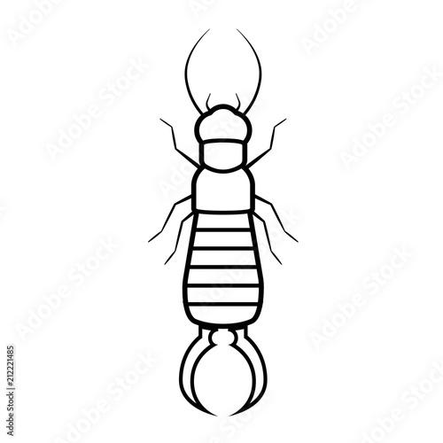 Fotografie, Obraz  Earwig bug outline