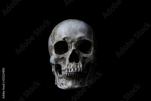 Human skull on black background Canvas Print