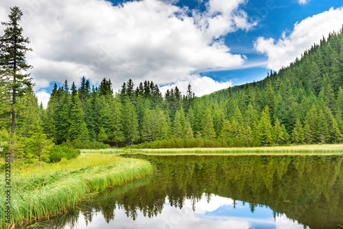 Tuinposter Meer / Vijver Blue water in a forest lake with pine trees