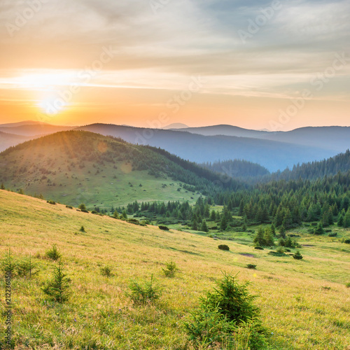 Aluminium Prints Blue sky Sunset in the mountains with forest, green grass and big shining sun on dramatic sky