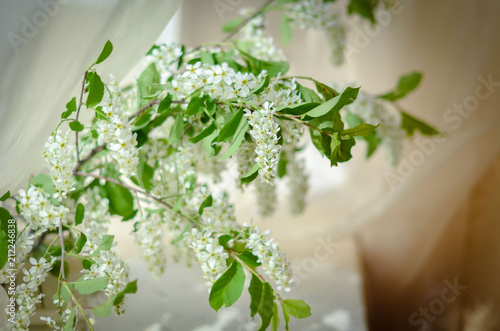 Wall Murals Lily of the valley Цветы