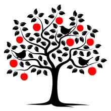 Apple Tree And Birds