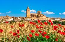 Spanien Mallorca, Mediterranes Dorf Sineu Mit Mohnblumen Feld Landschaft