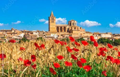 Fototapeta  Spanien Mallorca, mediterranes Dorf Sineu mit Mohnblumen Feld Landschaft