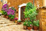 Fototapeta Na drzwi - Beautiful flowers street in old village of Fornalutx on Mallorca island, Spain