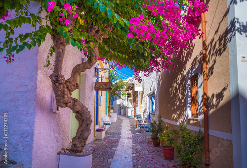 Canvas Prints Narrow alley Paved narrow alley of Ano Syros in Syros island, Cyclades, Greece. Street view