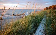 Fort Flagler Beach