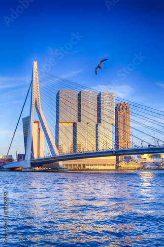 Famous Travel Destinations. Attractive View of Renowned Erasmusbrug (Swan Bridge) in Rotterdam in front of Port and Harbour. Picture Made Before the Sunset.